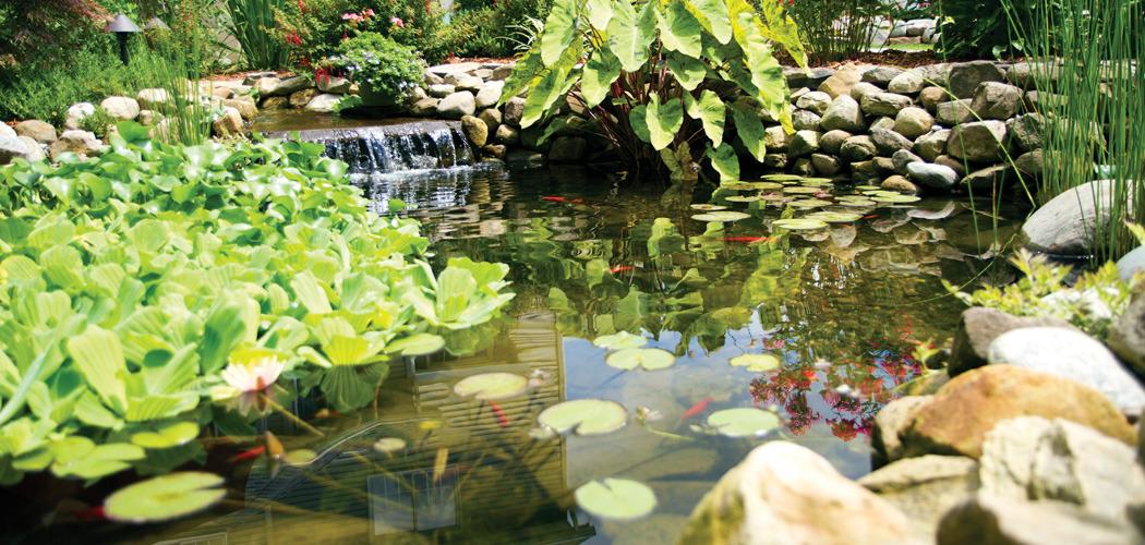 Water Garden Water Garden SmartRain