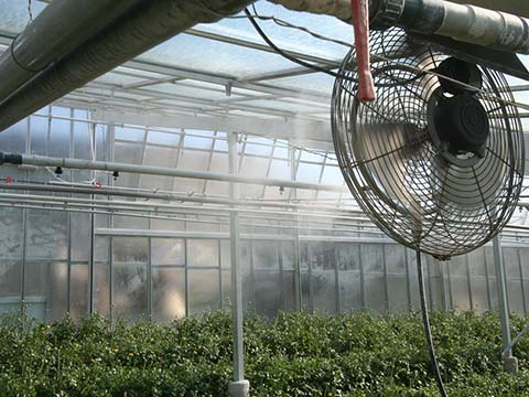greenhouse-cooling2