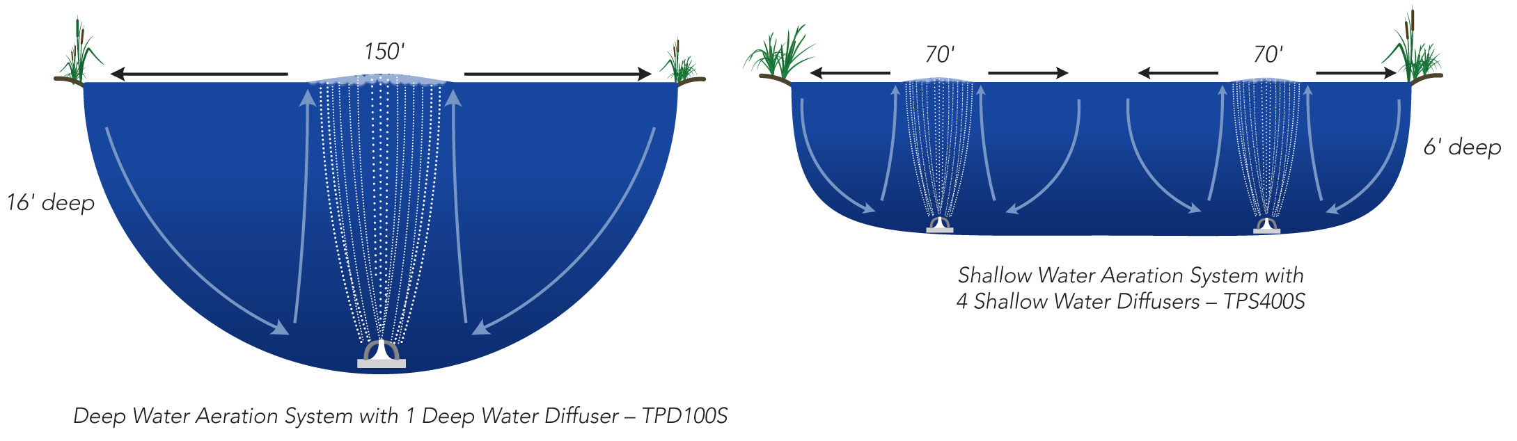 aeration-size-comparison