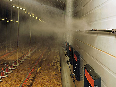 livestock-cooling1